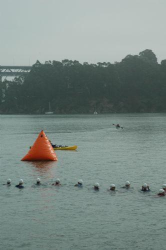 tiswimstart.jpg