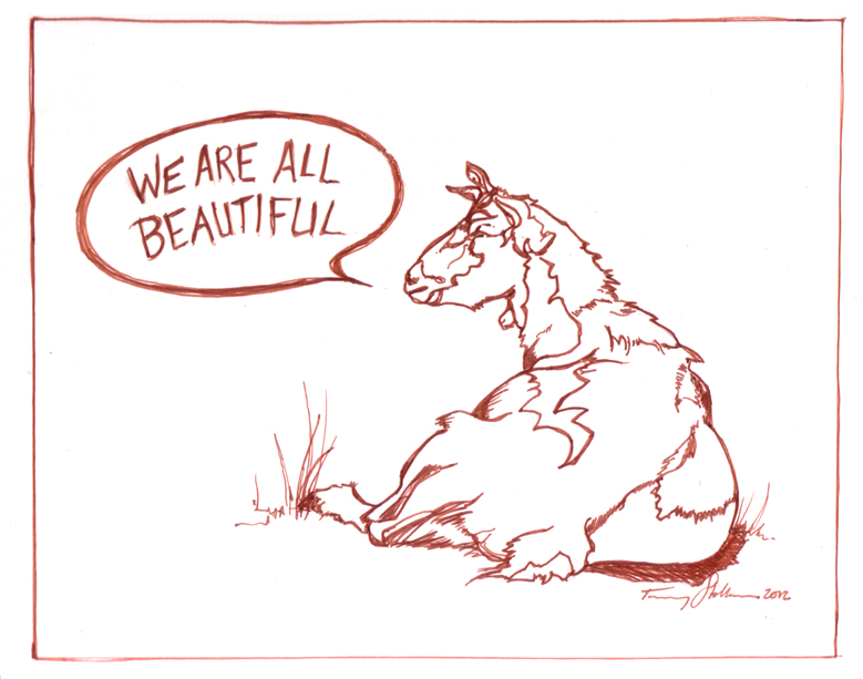 beautifulgoat.jpg