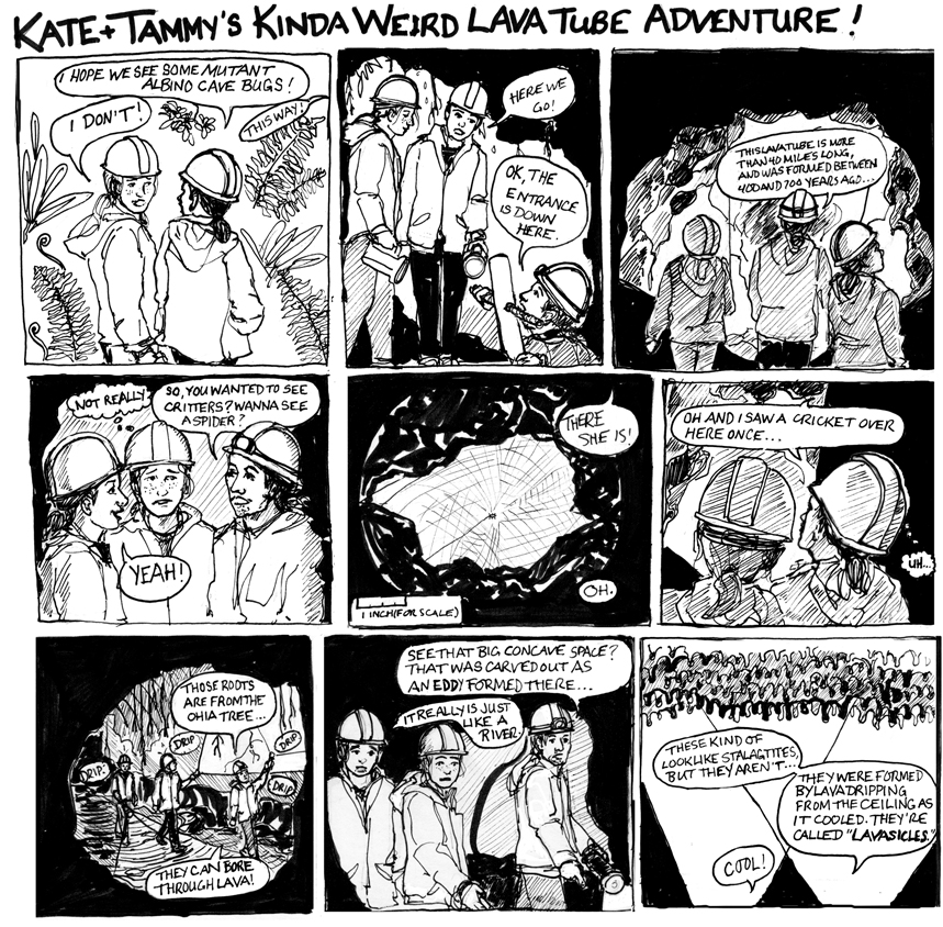 cave_comic1.jpg