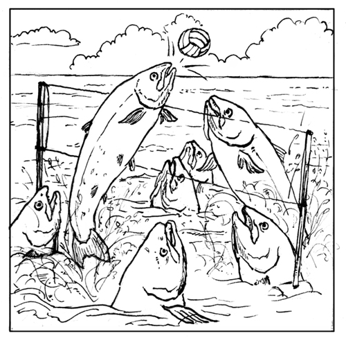 fish_volleyball_bw.jpg